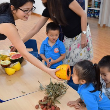 What are summer fruits? See, Touch, Smell and Taste! This is how we learn!